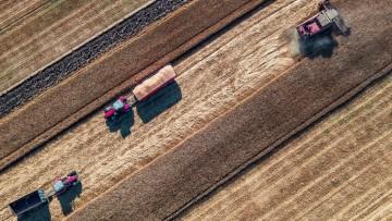 grain crops 2017 - Bulgaria