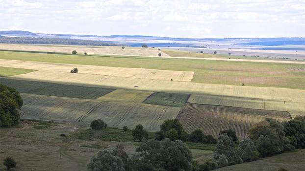 рента земеделска земя